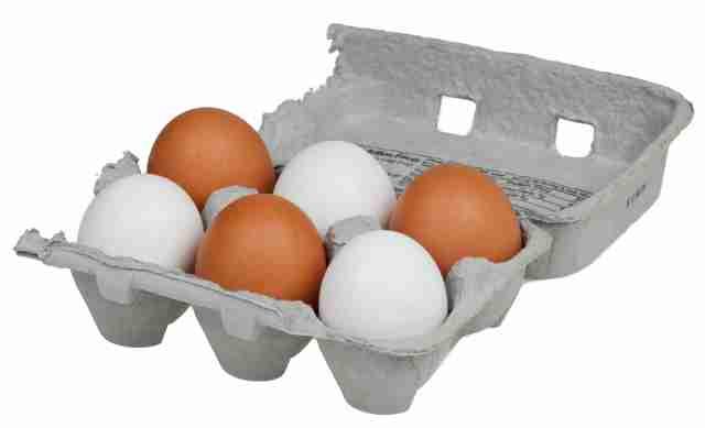 Η Κυρία και τα αυγά. Μια διδακτική ιστορία